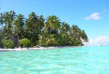 Tips Islas Bellas