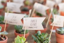 Succulent ideas for wedding