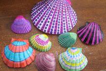 shells color