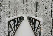 Winter Beauty ..!❄