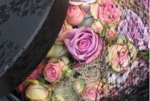 Viragsobozok / Viragdobozok