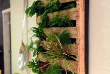 Petit jardin / Idées pour aménager un potager dans un petit espace