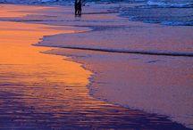 SEA&SEA ONLY SEA