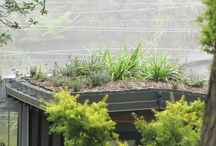 Roof Gardens / Bring your roof to life, with a stunning green roof.  See roof garden options here http://www.vikingroofspec.co.nz/products/low-slope/roof-garden/