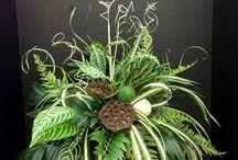 Foliage arrangements
