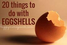 Eggshell craft