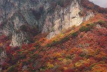 Mountain Majesties... / Mountains / by Sario