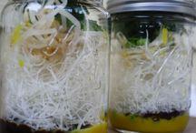 a- Jar Meals