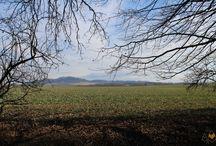 Krajina našeho domova /// Our beloved landscapes