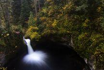 Destination Oregon / by Tarrah Lenahan