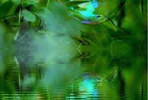 vihreä viettelys