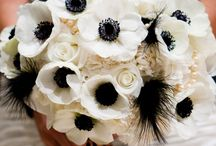 Black & white W weddings / keep walking ....