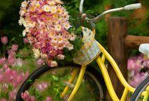 Flowering Bikes