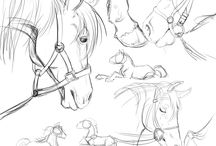 Drawings and horses