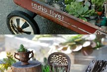 Gardens: Fairy Gardens / by Liz Geisert Kirk