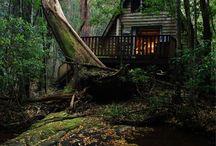 Cabins for escapades / by Indigo Wings