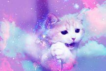 GALAXY CAT!