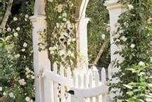 Drømme hagen