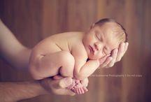Newborn Photography / by Ashley Prichard