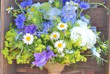 květiny louka