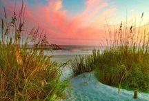 Beaches sc