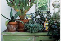 Plants, gardens...