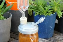 Food : Fermenting / Recipes & instructions for making fermented foods, info about probiotics & the benefits of eating/drinking living cultures. Kefir, Kombucha, Sauerkraut & more!