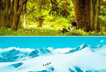 #LOTR #Hobbit