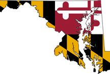 2015 Maryland Legislative Session Rentals / Annapolis Accommodations can assist you with housing during the 2015 Maryland Legislative Session.