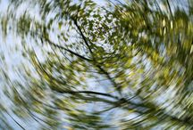Vertigo / Vertigo, Dizziness and Balance Problems and Treatment