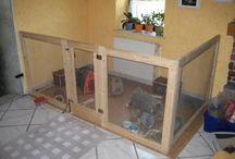 Bunny House / my son's new hobby =)