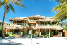 Caye Casa / Caye Casa is a boutique hotel on the beach in Belize. Located directly on the beach, the spacious rooms are convenient, peaceful and private -a ten minute leisurely stroll along the beach from the center of San Pedro Town.  Enjoy thatch covered porches, a relaxing pool, private sandy beach, pier over the ocean. Watch the sunrise from your porch, go on a jungle tour to the Mayan ruins, then watch the sunset from the pier. www.cayecasa.com  / by Julie Babcock