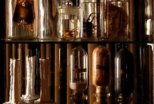 Curiosities: cabinets, displays and artful reproductions (gaffs) / by Mishele DuPree Winter