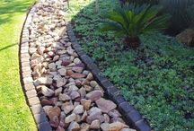 Landscaping help / Landscaping diy, to do's, & inspiration / by Renee Whitney