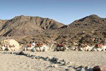 My Eastern Desert (Egypt)