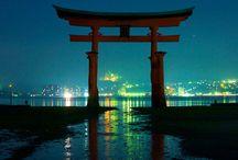 夜景 / きれいな夜景
