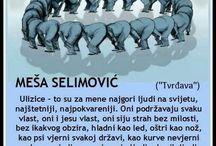 Meša Selimović / Citati misli, knjige