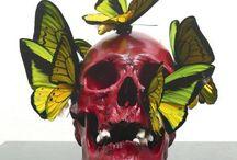 Crânes et vanités