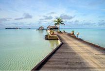 Sejur in Maldive! / http://www.4anotimpuri.ro/