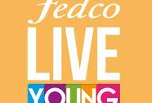 Live Young - Naranja / ¡Una Live Young sí que sabe cómo divertirse! El naranja representa las emociones, la creatividad, la diversión, la alegría, la determinación y el éxito