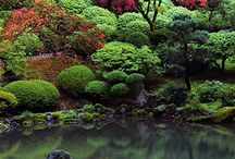 Japansk havehjørne