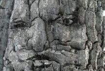 Pareidolia / How our minds make what we think we see significant. / by Donna Ruiz y Costello