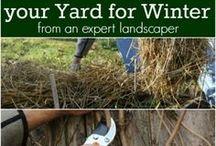 Gardening Tips & Advice