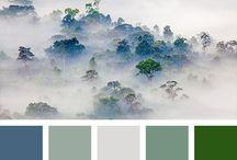 palete color