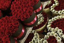 Rózsák vallomás