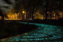 Daan Roosegaarde / Licht kunstenaar