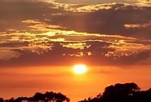 Perfect world / California sunset