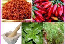 erbe aromatiche come usarle