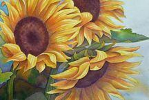 Floarea Soarelui