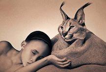 Artist: Gregory Colbert